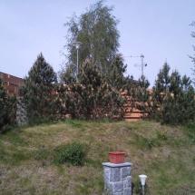 stromyrokpovsadbb