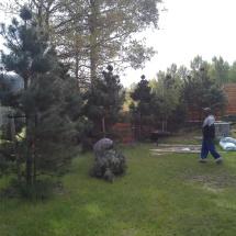 stromyrokpovsadbd